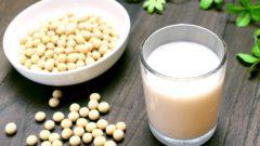 健康食品・自然食品の販売/製造業の店舗・企業リスト販売